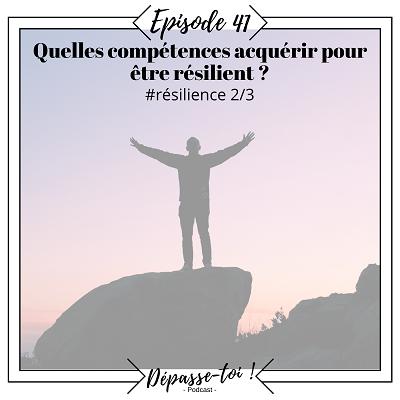 Quelles compétences pour accueillir les difficultés ?(résilience 2/3)